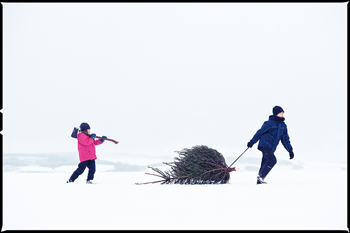 Nostalgia for Snow: A Climate Change Photography Project. Boy and girl dragging a Christmas tree home from the forest