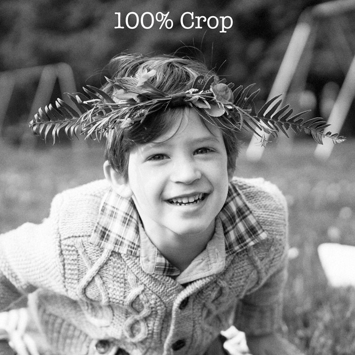 ASE Kodak T-Max 400 100% crop
