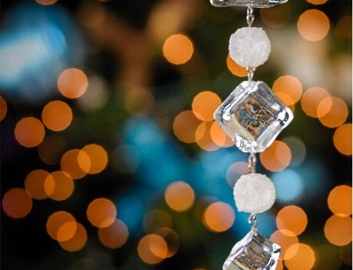 December's Bokeh Sparkles Photo Contest Winner