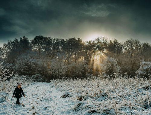 February's Winter Light Photo Contest Winner